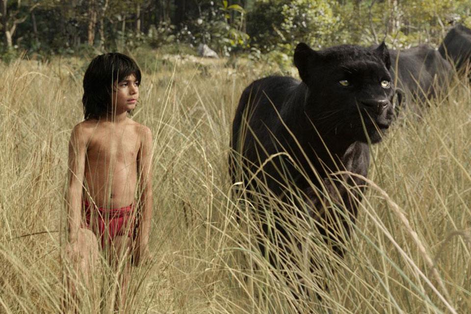 Mon avis sur : Le Livre de la Jungle