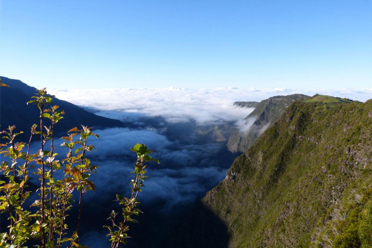 Réunion 2014